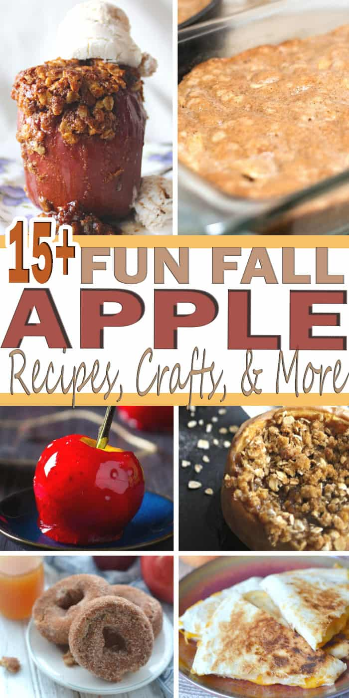 The fall season is up us and here at The Happy Home Life we are so excited about it. We are kicking the fall season with a 15+ Fun Fall Apple Round-Up. On this post you will find homeschool curriculum, recipes, and craft all about apples.
