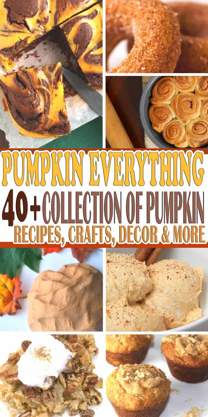 Love pumpkins? We do too! And to celebrate we have creating this 40+ collection of pumpkin recipes, crafts, decorations and more. Check out this Pumpkin Everything collection and get inspire this fall.