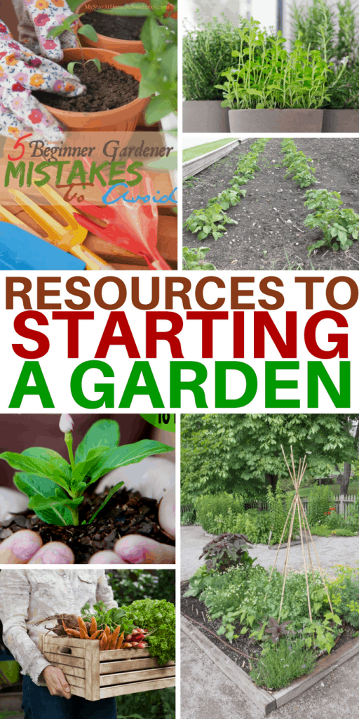 Starting a garden and not sure where to begin? Here are resources to help you get started with your garden and have an amazing gardening season.